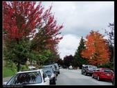 keep a diary in Canada(Aug~Dec2008):1369708598.jpg
