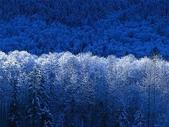 未分類相簿:Winter
