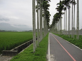 未分類相簿:台東關山--環鎮步道