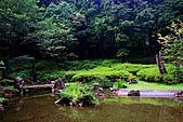 輕驅北橫遊明池:IMG_9695.JPG