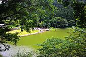 輕驅北橫遊明池:IMG_9678.JPG