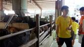 大山休閒牧場:DSC07956彰化縣花壇鄉~大山休閒牧場~養殖區.JPG