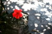 2013峇里島,懶洋洋自助行:52710014.jpg