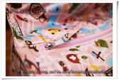 2017手作物:『客訂』歐洲之旅輕便幼兒防潑水棉被袋加大 NO6403.jpg