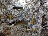 三芝貝殼廟:IMAG6320.jpg
