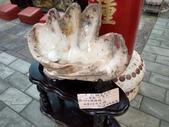 三芝貝殼廟:IMAG6315.jpg