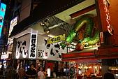 20080920日本大阪自助旅行Day1:DSC00449_大小 .JPG