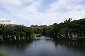20080504日本琉球自助旅行Day4:DSC09044_大小 .JPG