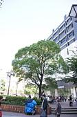 20111007日本自由行Day8:DSC04584_大小 .JPG