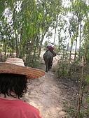 20090317泰國團體旅行Day2:P1070562_大小 .JPG