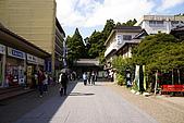 20070925日本自由行Day5:DSC00226_大小 .JPG