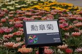 20110425台北花博最終日參觀:DSC08006_大小 .JPG