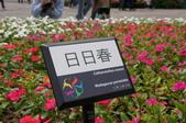 20110425台北花博最終日參觀:DSC08008_大小 .JPG