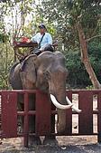 20090317泰國團體旅行Day2:DSC06439_大小 .JPG