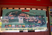 20080504日本琉球自助旅行Day4:DSC08786_大小 .JPG
