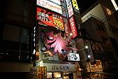 20080920日本大阪自助旅行Day1:DSC00437_大小 .JPG