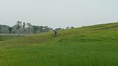 新化農改場:P1010084.JPG