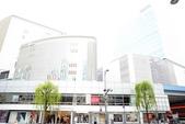 20140102東京:DSC_1548.jpg