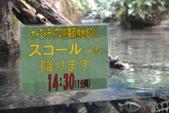 20150620 名古屋 :DSC_0673.jpg