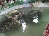 外婆的澎湖灣 Day1:1162995388.jpg