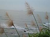 白沙灣:DSCF3797