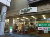 日本:DSC09046.JPG