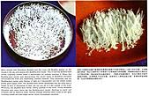 《多杰羌佛第三世》 :金剛不動佛和長壽佛在幾萬尺的虛空雲端之上降下來的甘露.jpg