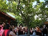 第三世多杰羌佛系列相關消息 :盛會的吉祥圓滿,華藏寺聖寶之一的聖樹及正寺門外的行道