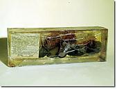 《多杰羌佛第三世》 :此六個酪梨已製成標本保存,此文即抄錄於該標本上的說明.