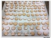 216烹飪實習( 104年9月~105年1月)&316(105年9月~106年1月)聶宗輝吳宇峰:316 (1).jpg