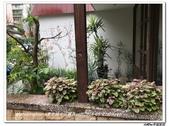 4F COOKING HOME~姜老師中式麵食SET6:nEO_IMG_IMG_1100.jpg