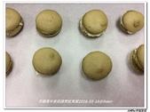 304~309烹飪實習照片105年2月~6月(謝雯嵐):雯嵐抹茶馬卡龍 (5).jpg