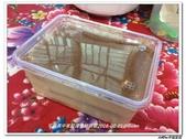 烹飪社(104上下):烹飪社 (7).jpg