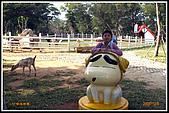 2009-12-5小叮噹科學園露營新鮮遊,值得推薦!:OPICT3209.JPG