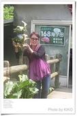 賞海芋:ap_F23_20110410081329831