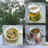 春天午茶:page-2.jpg