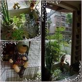 田中園餐廳:page-5