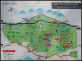 20190830蘇花公路:nEO_IMG_IMG_2030.jpg