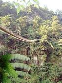天梯、福盛山休閒農場二日遊:DSC00242.JPG