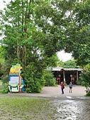 馬太鞍濕地生態園區:2020-05-27 11.39.09.jpg