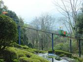 泰雅渡假村:DSCF8817.JPG