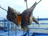東石漁人碼頭:DSCF6334.JPG