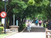 后豐、東豐鐵馬道:DSCF1444.JPG