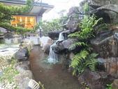 埔里綠莊飛閣度假會館:DSCF8124.JPG