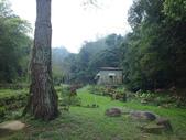 泰雅渡假村:DSCF8768.JPG