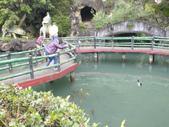 泰雅渡假村:DSCF8790.JPG