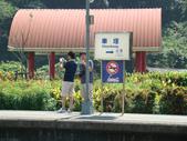 車埕、向山遊客中心及鯉魚潭:DSC02950.JPG
