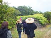 南仁湖步道:DSCF8412.JPG