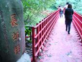 小烏來風景區:DSC03937.JPG