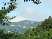忘憂森林及小半天:DSC02402.JPG